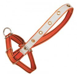 Adjustable heifer halter