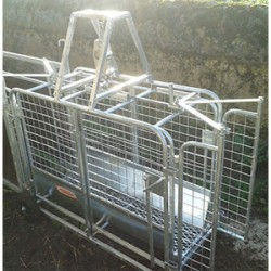 Lamb weigher ap