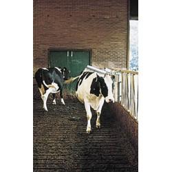 Cepillo para bovino - vink