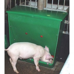Alimentador para cerdo 60l