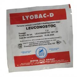 Leuconostoc 1u