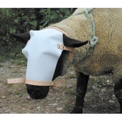 Bosal para carnero