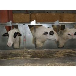 Fijador de cabeza de ovejas - 5 lugares