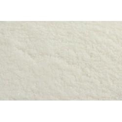 Camargue fine salt organic
