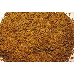 Semillas enteras de alcaravea